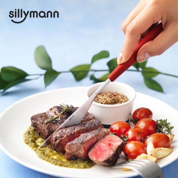 [sillymann] Cutlery knife WTK907