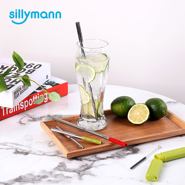 PORTABLE STAINLESS STEEL STRAW SET WSB2082
